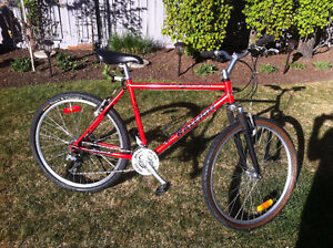 RALEIGH AVALANCHE MENS 24 SPEED MTN BIKE