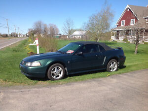 2002 Ford Mustang Cabriolet