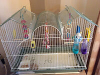 2 Budgies with Cage and Toys