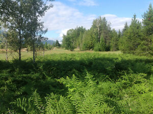 Land with water in Slocan Valley south