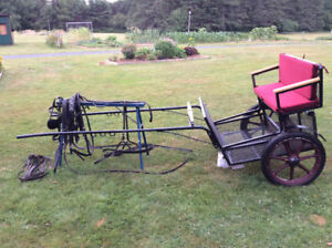 Horse Easy Entry Cart and Harness