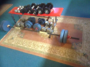 Free weights and bench