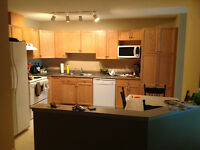 Gay male has room with pvt bath 4 rent in 2 bed 2 bath dt condo