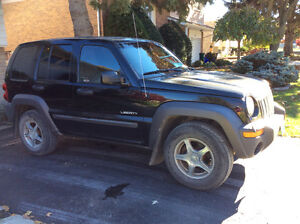 2004 Jeep Liberty Hatchback