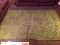 Green Rug - 4.5 ft by 6.5ft - Good Condition