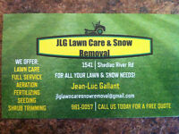 Lawn care, Landscaping, and property work