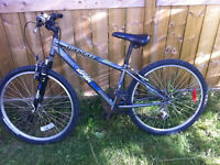 Used bikes for Sale, small one $35, Adult bike $50 & $60
