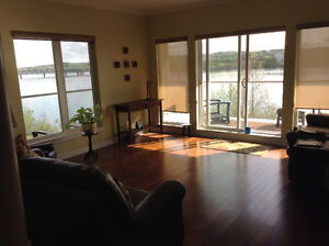 Bright and Sunny Condo   -  Southview Lane