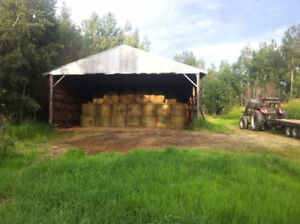 Round Hay Bales For Sale - McBride