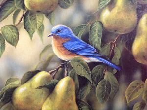 Casse-tête Oiseau bleu et les poires 550 morceaux à 3$