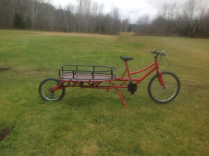 New price on Cargo bike