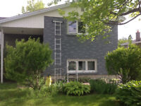 BRICK STAINING! update you old brick for a fraction of the cost