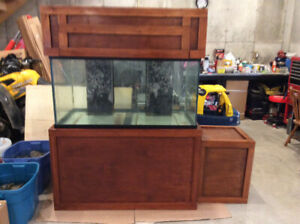 120 gallon saltwater aquarium
