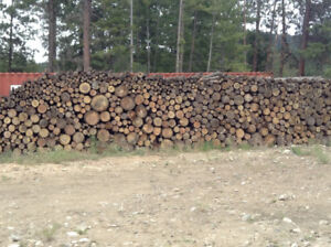 Fir & Pine Mix Firewood 8' logs