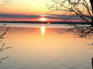 Cottage for rent on scenic Rice Lake Peterborough Peterborough Area image 7