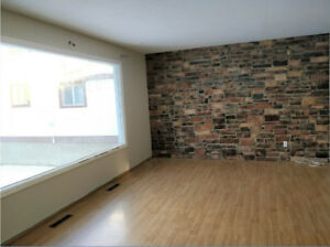 Newly Renovated 4 Bdrm House w/full bsmt – 1 mo free*