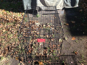 Pet cage dog cage little surface rusty solid , only 25 dollars Kitchener / Waterloo Kitchener Area image 1