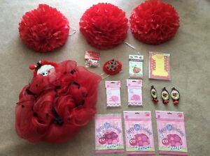 Lots of 1st Birthday Party supplies, Ladybug theme