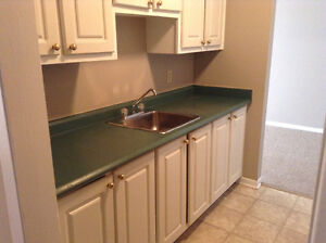 LARGE ONE BEDROOM UNITS FOR RENT