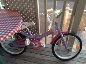Girls Bike.   Excellent condition. Only 6 months old