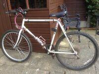 Claude Butler Mountain Bike 21 Gear