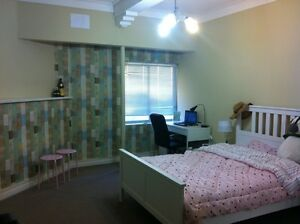 Beautiful large room for a friendly person Kensington Eastern Suburbs Preview