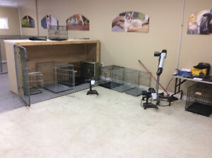 Dog cages all sizes
