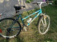 "Ladies Infinity 21 Speed Mountain Bike 17"" frame"