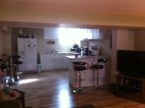 NEWLY RENOVATED ALL INCLUSIVE 2 BEDROOM lower level