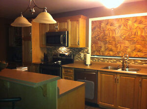 Backsplash Installer St. John's Newfoundland image 3