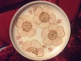 2. X Denby Gypsy Dinner Plates