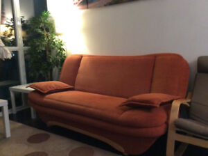 Sofa bed from Europe- $150