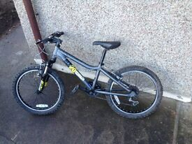 Ridgeback MX20 Mountain Bike