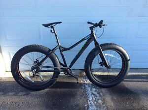 "19"" Diadora Artico Fat Bike"
