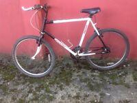 All terrain bike