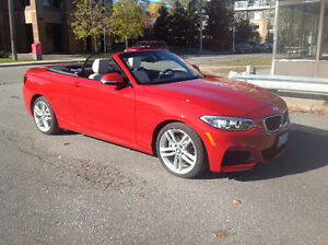 BMW Cabriolet 2016  228XI Convertible