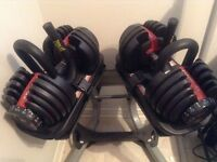 Bowflex adjustables dumb bells with stand and bench