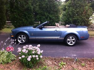 2008 Ford Mustang 4.0L V6 Convertible Kitchener / Waterloo Kitchener Area image 4