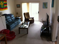 Room available near Capri Mall, great location!