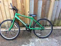 Railigh geared bike