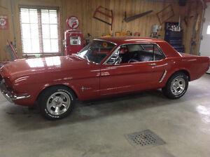 Mustang 1965 neg échange accepter