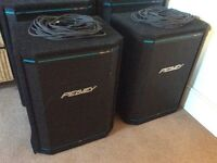 Pair of Peavey HiSys 2XT speakers, powerful speakers in excellent condition