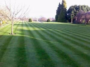 Lawn, Garden, Property Maintenance Manly Manly Area Preview