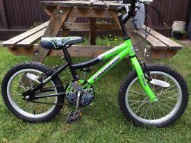 "Boys 16"" T-REX Probe bike"