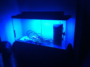 36 gallon aquarium with new filter and light