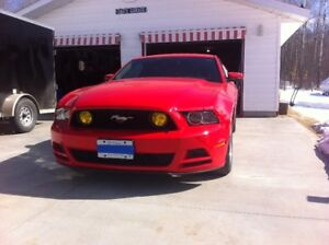 2014 Ford Mustang Base Coupe (Priced for Quick Sale)