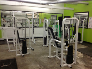 TOP OF THE LINE PARAMOUNT SERIES GYM EQUIPMENT AT A GREAT PRICE!
