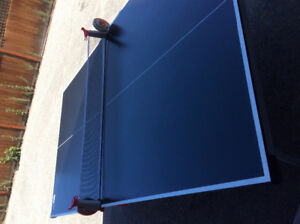 Foldable ping pong table