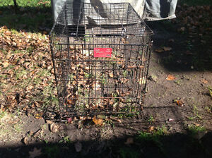 Pet cage dog cage little surface rusty solid , only 25 dollars Kitchener / Waterloo Kitchener Area image 5