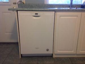 New dishwasher (3 months old)